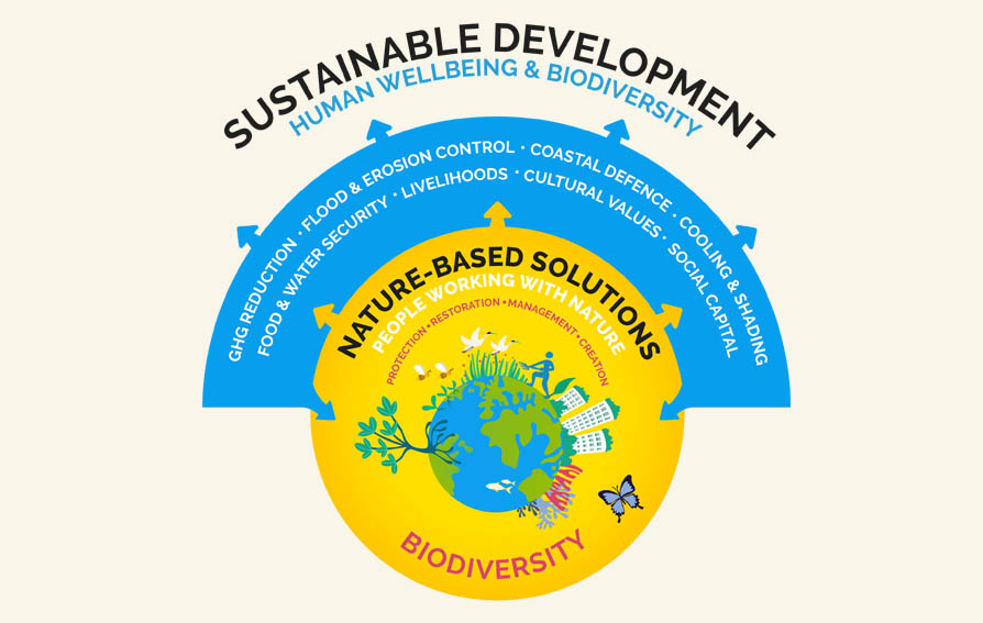 Illustration of what describes Nature-based Solutions