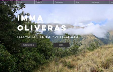 Screen shot of the PI's website