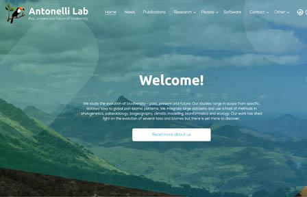 Sceenshot of antonelli lab homepage