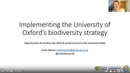 Screenshot of Emily's seminar