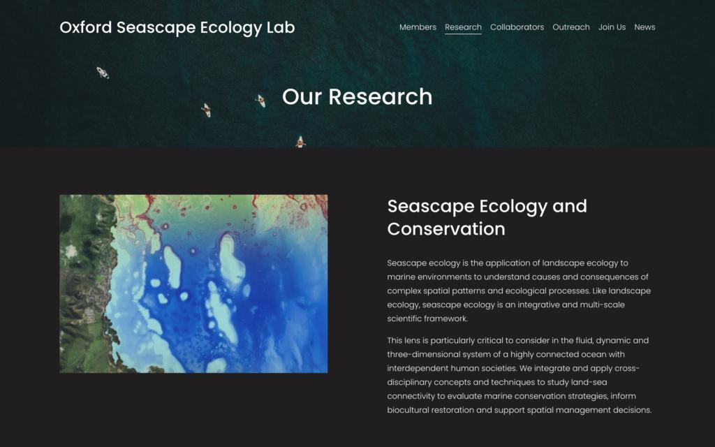 screen shot of their website