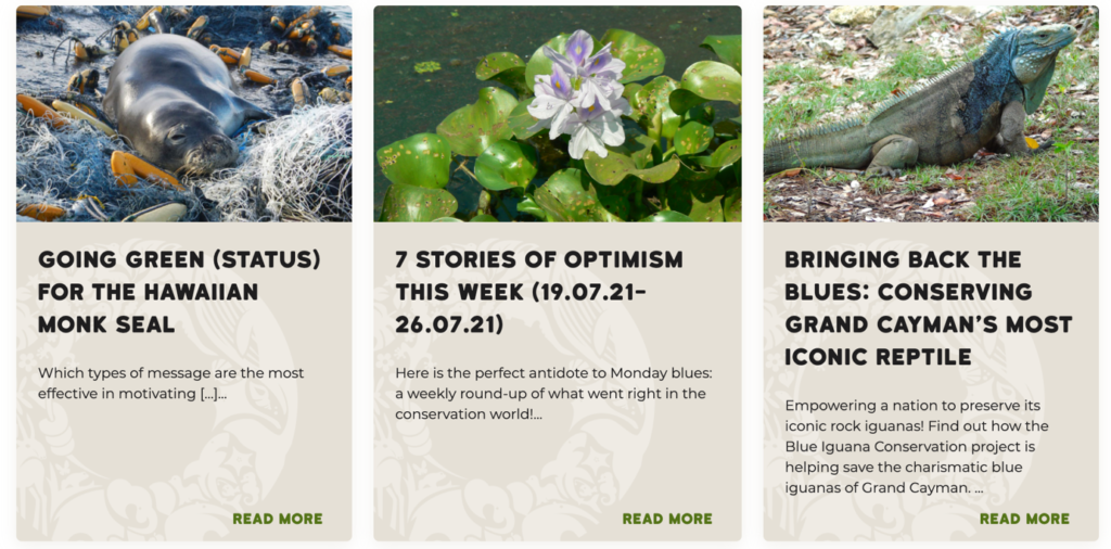 screencapture of blog posts, featuring a seal in marien waste, and lilly pad and flower and a reptile